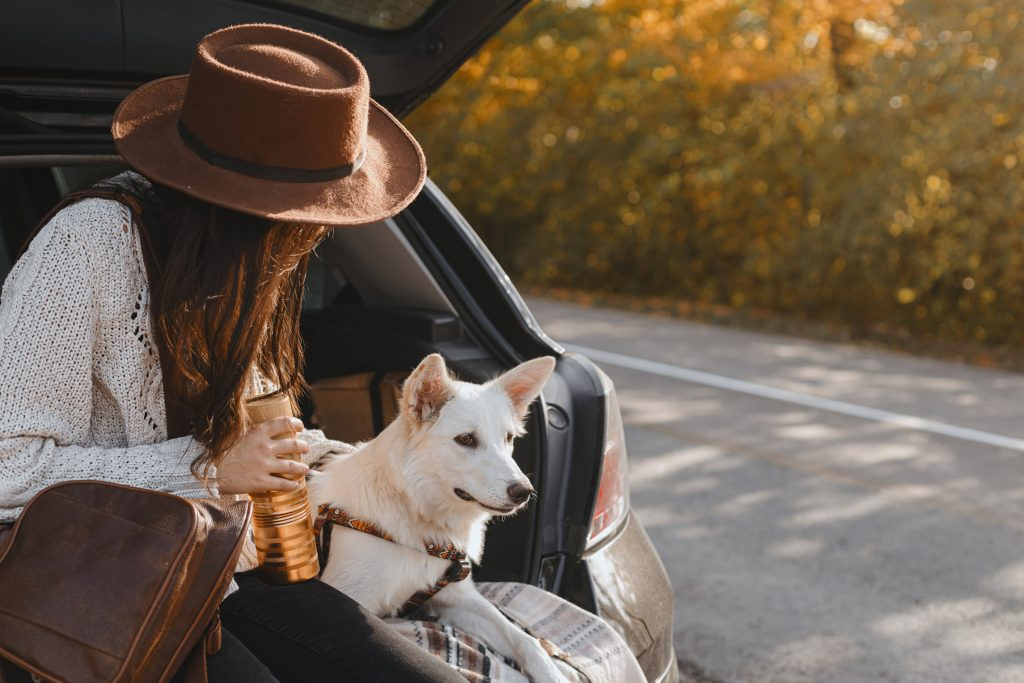 Woman relaxing with her dog beside the road.