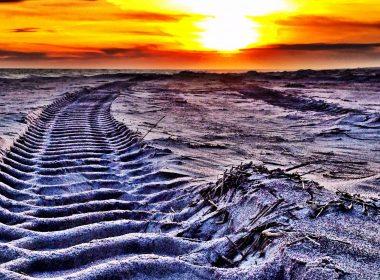 Truck tire tracks on sandy beach at sunset